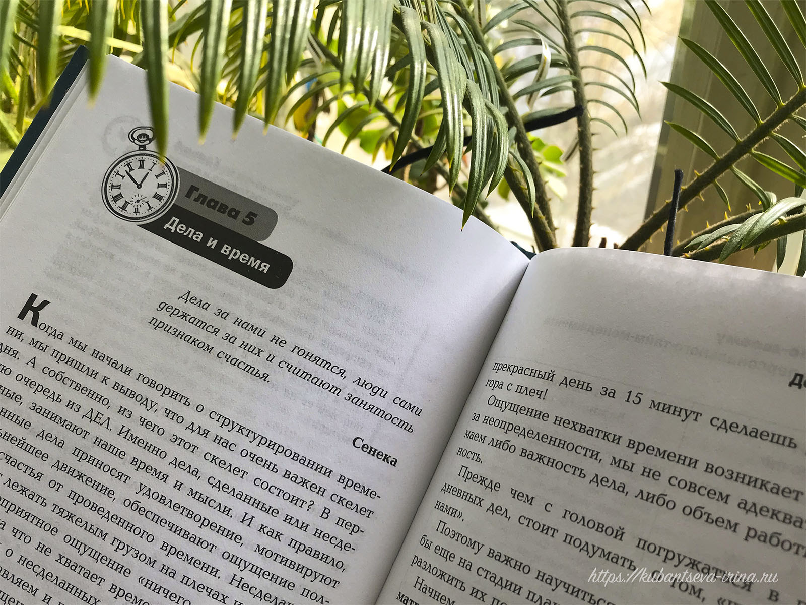 книги по тайм-менеджменту фото