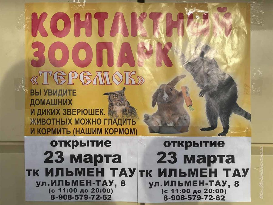 Контактный зоопарк Теремок