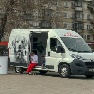 ветмобиль Royal Canin