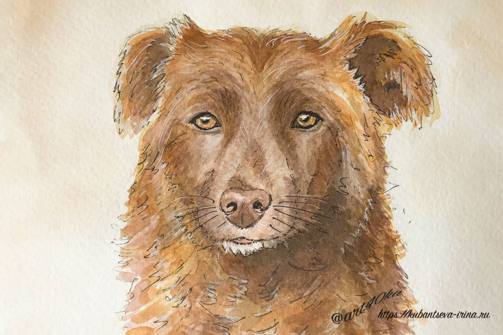 рисунок собаки акварелью