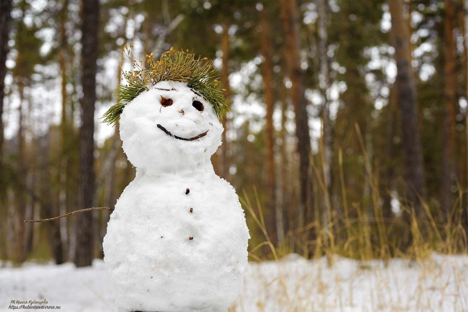 веселый снеговик фото
