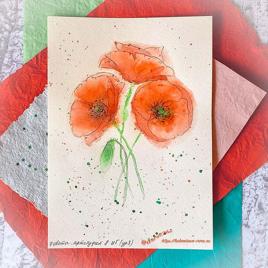 цветок мака акварелью специалист по неуспеванию