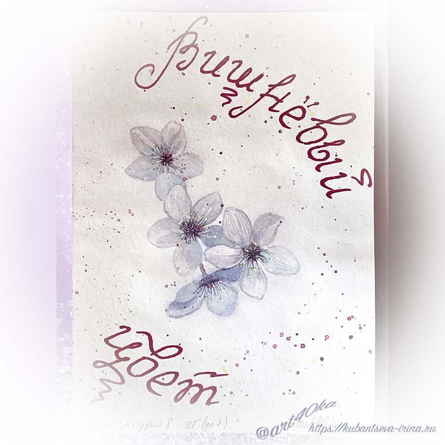 цветы вишни акварелью фото от специалиста по неуспеванию и сливу
