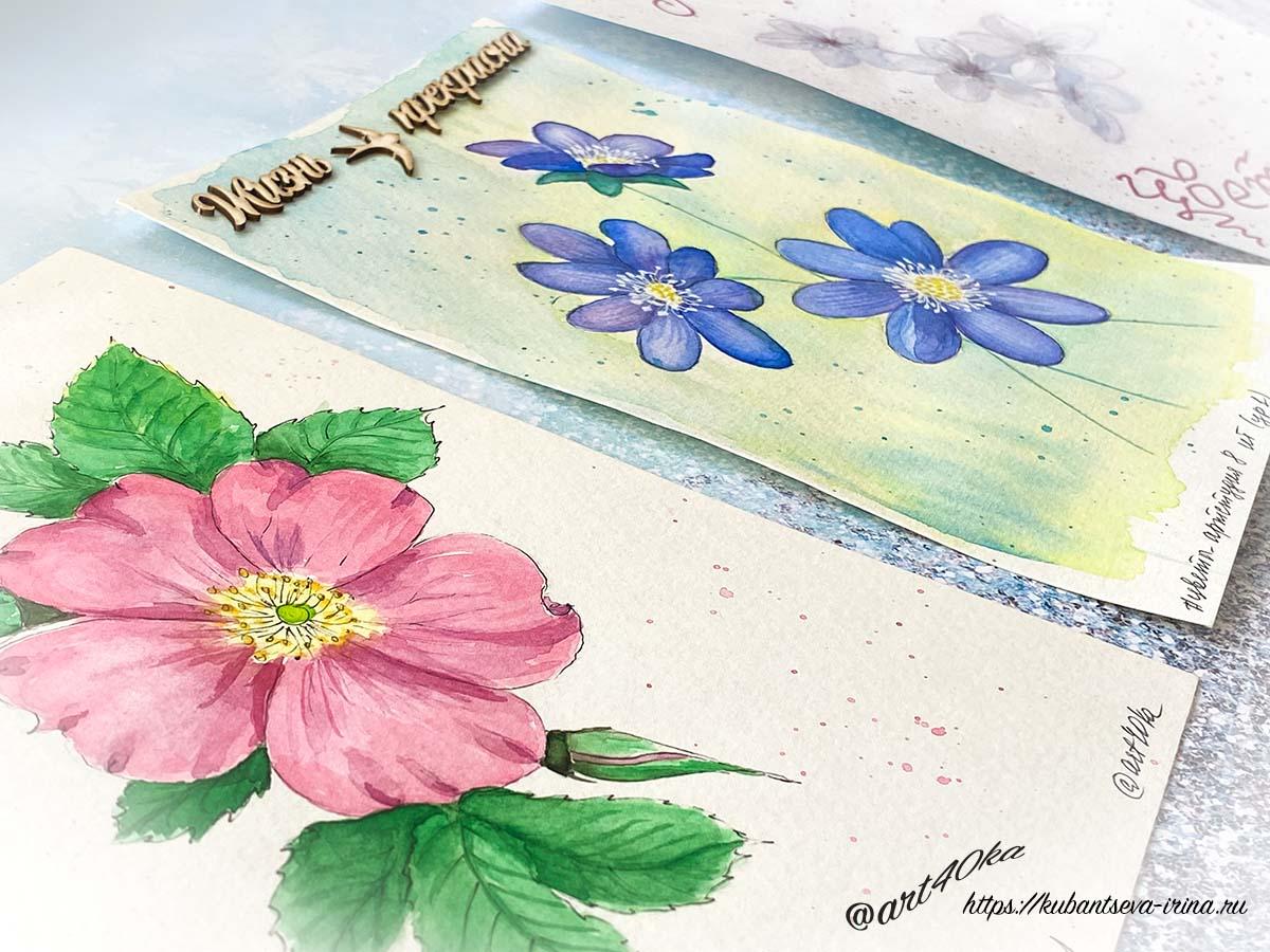 цветы акварелью фото от специалиста по неуспеванию и сливу
