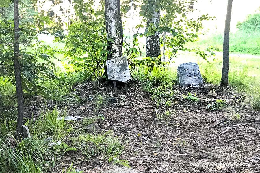 кладбище домашних животных в челябинске