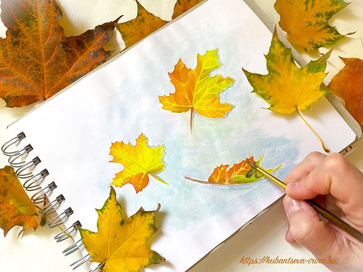 осенние листья рисунок акварелью